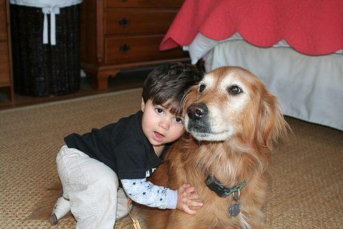 Photo of Nanny Dog Breeds