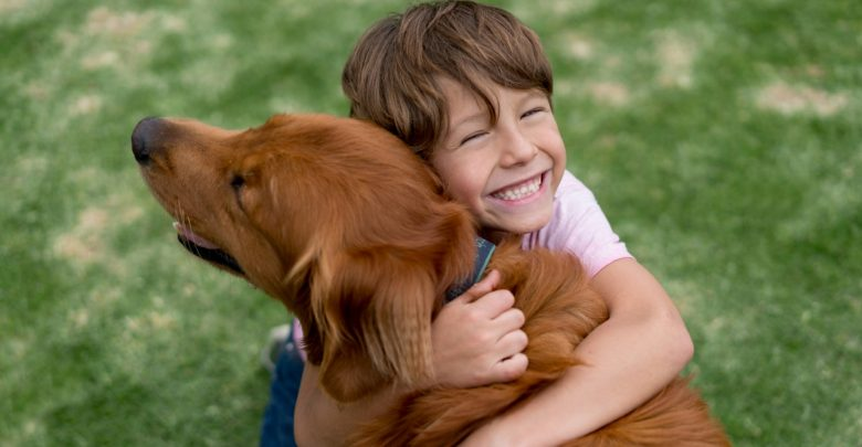 Photo of How to Take Care of Your Dog: Guidelines and Tips