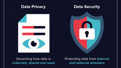 Photo of Difference between Data Security and Data Privacy