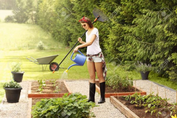 Update Your Landscaping